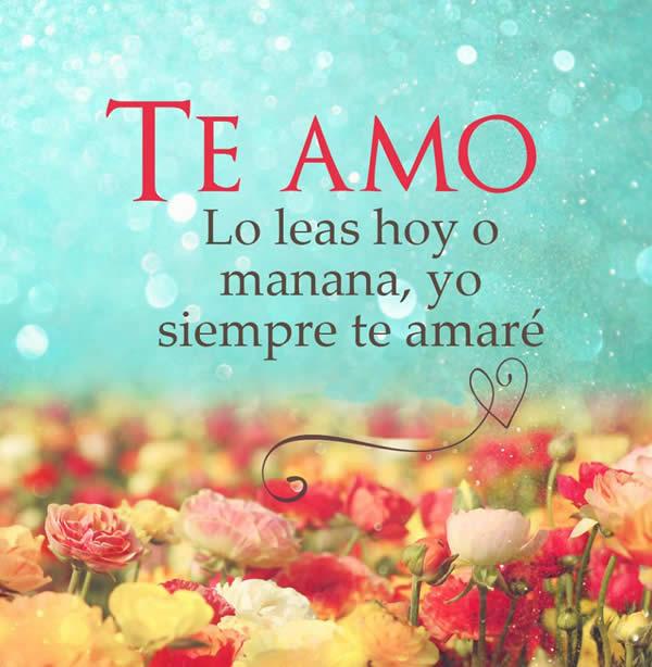 Te amo amor mio