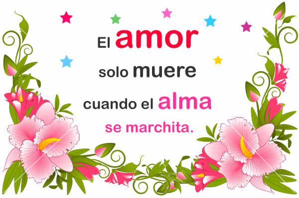 Alma amor y vida