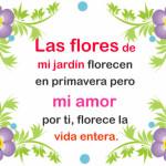 Imagenes bonitas de amor: Flores de mi Jardin