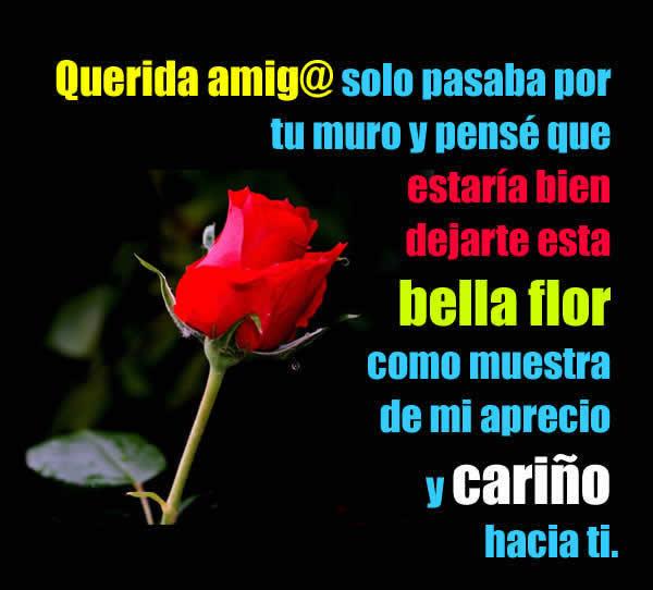 Te regalo una rosa