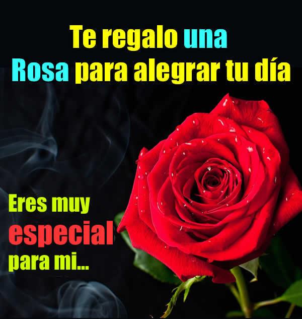 Imagenes de rosas con mensajes