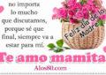 Feliz dia de la madre con imagenes