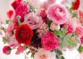 Fotos bonitas de rosas de sabado