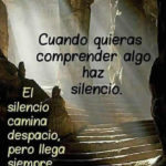 El silencio total Letra