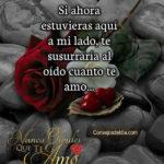 Frases con fotos de Cuanto te amo amor