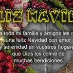 Feliz Navidad para ti y tu familia Letra