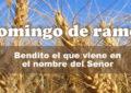 Imagenes con Semana Santa: Feliz Domingo de Ramos