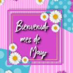 Frases de Mayo para recibir el mes con imagenes