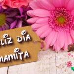 Mensajes bonitos para el Dia de la Madre 2021 con fotos